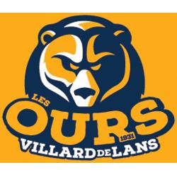 Logo de VILLARD DE LANS LES OURS