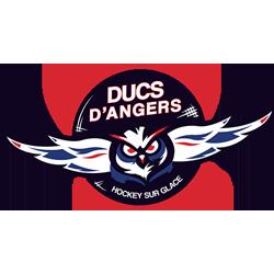 Logo de SASP les Ducs d'Angers